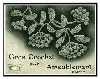 Gros Crochet pour Ameublement (1) c.1926 - Fancy Decorative Flowers in Crochet (in French)