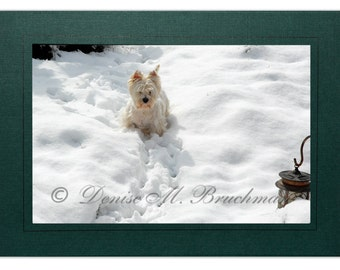 Westie Cards - Westie Notecards - Westie in the Snow Card Blank Inside - Westie Christmas Cards - Westie Holiday Cards - Westie Gifts