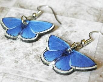 Blue Butterfly Believe in Impossible Things Earrings