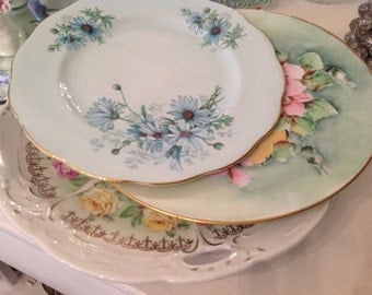 Beautiful Collection Mixed  Pattern Plates Floral Royal Albert Hand Painted Shabby Chic Decor
