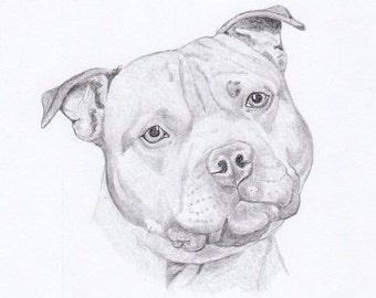 Popular Items For Staffordshire Bull On Etsy