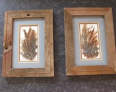 Pair Barnwood Framed Original Watercolors - Fall Colors Cattails and Grasses by Claudette Danbury