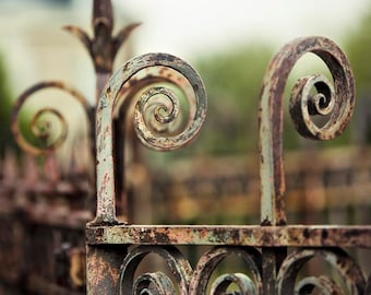 Photograph of Wrought Iron Fence - Paris Print, Rustic, Brown, Mint Green, Neutral Wall Art, Architecture, Office Decor