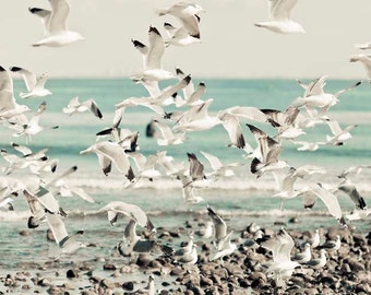 Ocean Photography, White, Blue, Pastel Beach Decor, Nautical, Birds in Flight, Malibu California Print