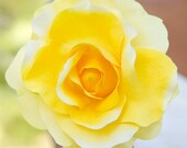 Large Canary Yellow Rose Hair Flower Clip // Pinup // Bright Accessories / Silk Flowers // Wedding Style