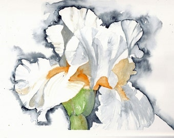 "Original watercolor painting - iris- 8.3"" x 11.7"""