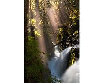 Forest Photography Sol Duc Falls, Olympic National Park, Fairy Tale, Waterfall Photography, Nature, Washington, Olympic Peninsula, Olympu