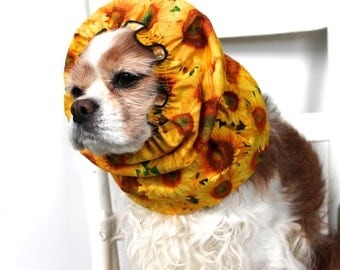Sunflower Dog Snood / Stay Put 3 Row Elastic Threads / Cavalier King Charles or Cocker Snood