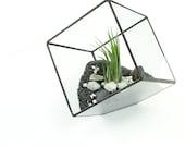 Terrarium Cube, Square Air Plant Terrarium, DIY Kit