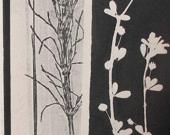 Small original botanical monoprint by Stef Mitchell Nature print cream paper Moorland wild flowers Influenced by Japanese art & Art Deco