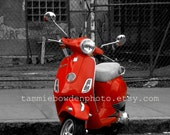 Red Scooter - Original Photograph 8x10 - New York City NYC Black and White Red Pop of Color Street Urban Landscape Chain Link Fence Alley