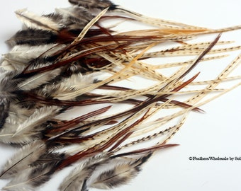 Craft Feathers Natural Unique Rooster Saddle Feathers Golden Tan Black
