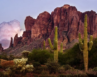 Saguaro Cactus Arizona Desert Superstition Mountains Southwest  Fine Art Image, unmatted