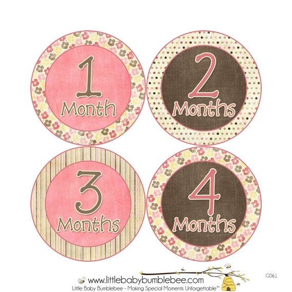 Monthly Baby Stickers, Girls First Year Photo Props, Baby Month Stickers, Baby Announcement, Monthly Photos, Baby Gift, Pink & Brown (G0