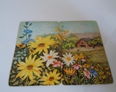 Vintage Hoyle Playing Cards with 2 part Farm scene with Flowers 2 SETS