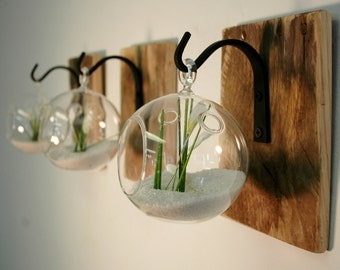 individual glass globe wall decor each mounted to recycled wood board with wrought iron hook for - Unique Home Decor