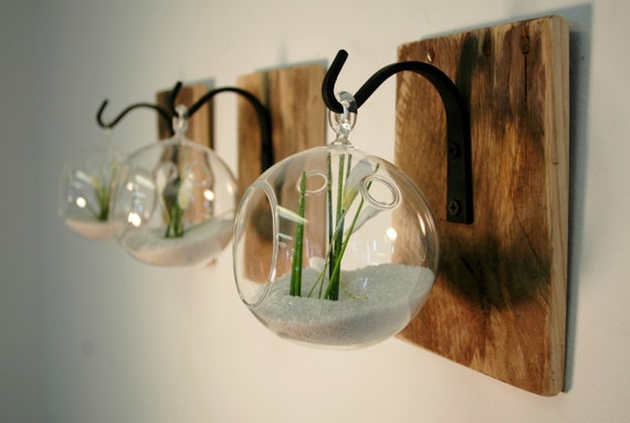 individual glass globe wall decor each mounted to recycled. Black Bedroom Furniture Sets. Home Design Ideas