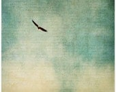 Bird photography, bald eagle, dreamy clouds, nature decor, turquoise, cream, fine art print