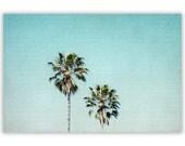 "California Photography - teal, aqua decor, palm trees, LA style decor, home decor - ""Two For the Sun"" - Fine Art Photograph"