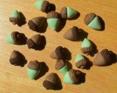 30- 100% edible Gum Paste Acorns
