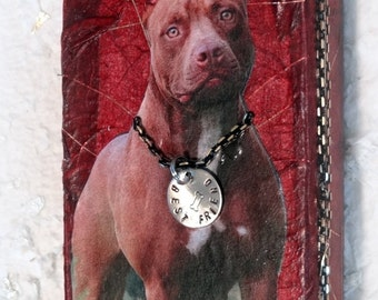 Pit Bull, Altered Tin Box, Memory Box, Coin Purse, Credit Card Case, Stash Box, Keepsake Box, Treasure Box, Pit Bull Tin Box, Change Purse