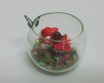 Dollhouse terrarium 1/12 scale