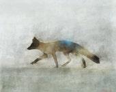 Fox Hunt 04: Giclee Fine Art Print 13X19