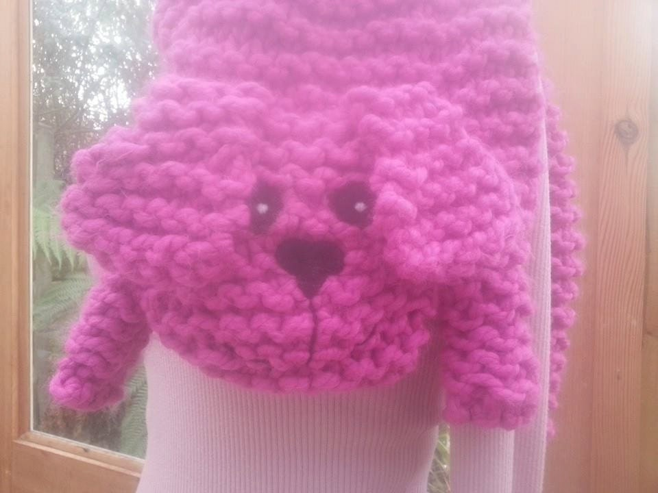 Sausage Cats Hand Knitted Sausage Dog Scarf E10190947031560589m