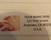 Newborn Baby Feet with Rose Petals Return Address Label