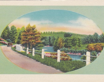 Beauty Scene, Vintage Linen Postcard - Unused (M)