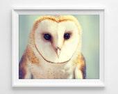 "Barn Owl Photograph Unframed / mint green orange golden cream / modern minimal woodland cute bird / photography print / ""You Precious Thing"""