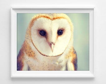 "Barn Owl Photograph Unframed / mint green orange golden cream / modern minimal woodland cute bird / photography print / ""You Precious Thing"""