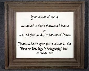 8x10 Barnwood Frame - Your Photo Choice