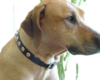 Black Leather Dog Collar, Orange Rivets, Custom Leather Collar,  Comes in all sizes