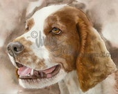 "Welsh Springer Spaniel, AKC Sporting, Hunting Gun Dog, Pet Portrait Dog Art Watercolor Painting Print, Wall Art, Home Decor, ""Welsh Cocker"""