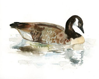 CANADA GOOSE  by DIMDImini Special Edition  Print 10X8inch