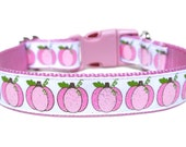 "Pumpkin Dog Collar 1"" Fall Dog Collar"