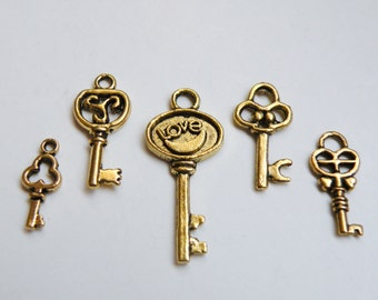 5 Skeleton key small charm collection antique gold 16x7mm to 31x13mm FCW5941-2