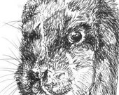 "Rabbit - ACEO PRINT, Black and White, Line Drawing, Animal Art, ""Bunny"", Art - Unique Gift"