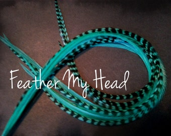 "10 Premium Feather Extensions, Extra Long Long, Grizzly And Solid Feathers 9""-12""Aqua"