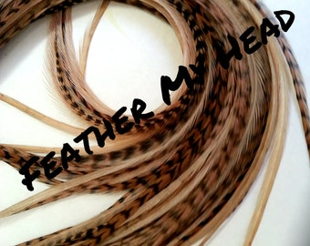 "Long 9""-12""  Feather Hair Extension, Whiting Eurohackle, Fawn Color (5 Grizzly / 5 Solid)"