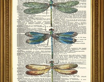 "DRAGONFLIES PRINT: Original Vintage Dictionary Book Page Antique Art Wall Hanging (8 x 10"")"