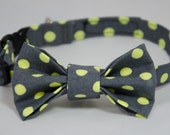 Zoe (lime) xs dog collar and matching bow tie set, grey with lime green dots