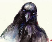 Original Watercolor Painting - Raven Head - Detail - One of a Kind