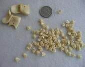 100 Tiny Resin Elk Ivory Beads