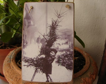 Victorian little boy with Christmas tree, old photo image on shabby chic wooden tag.