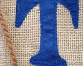 Custom fabric banner for Danae - baby's name banner, old fashioned, burlap banner, baby gift