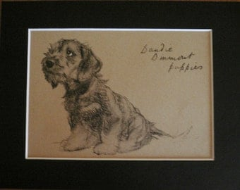 TERRIER DOG Vintage mounted 1935 Cecil Aldin Dandie dinmont terrier puppy dog looking to left plate print Unique Christmas Thanksgiving gift