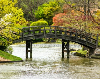 Japanese Style Bridge Over Pond Print