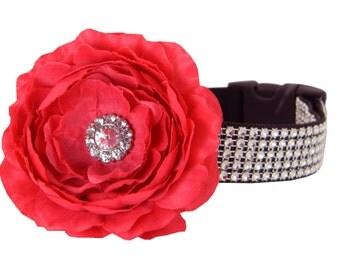 Red Rhinestone Dog Collar Flower Set,  Dog Collar Flower: Silver on Black Rhinestone with Red Rani
